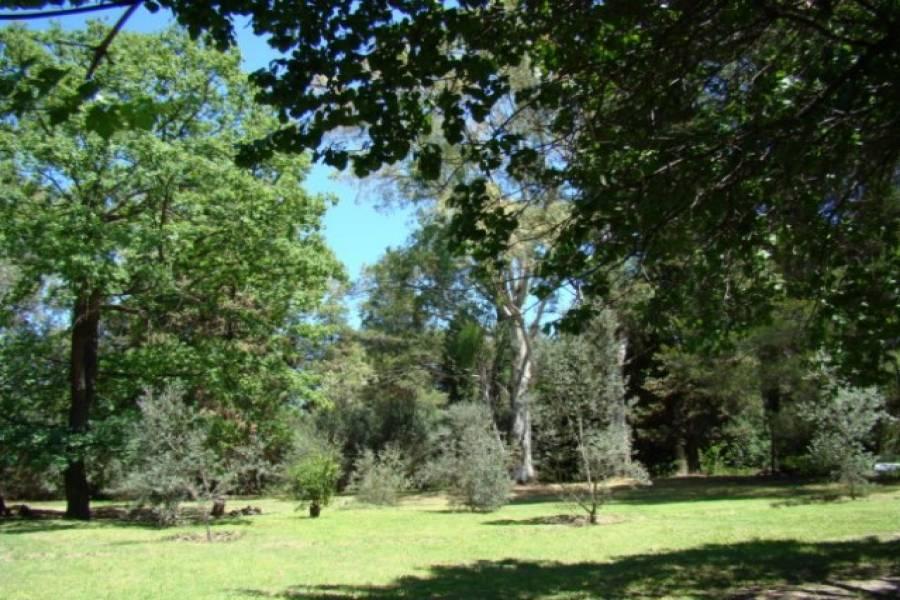 San Javier,Córdoba,6 Habitaciones Habitaciones,5 BañosBaños,Chacras-Quintas,1360